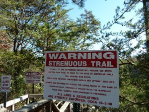 tallulah falls sign